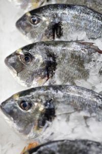 fish industry and omega-3's